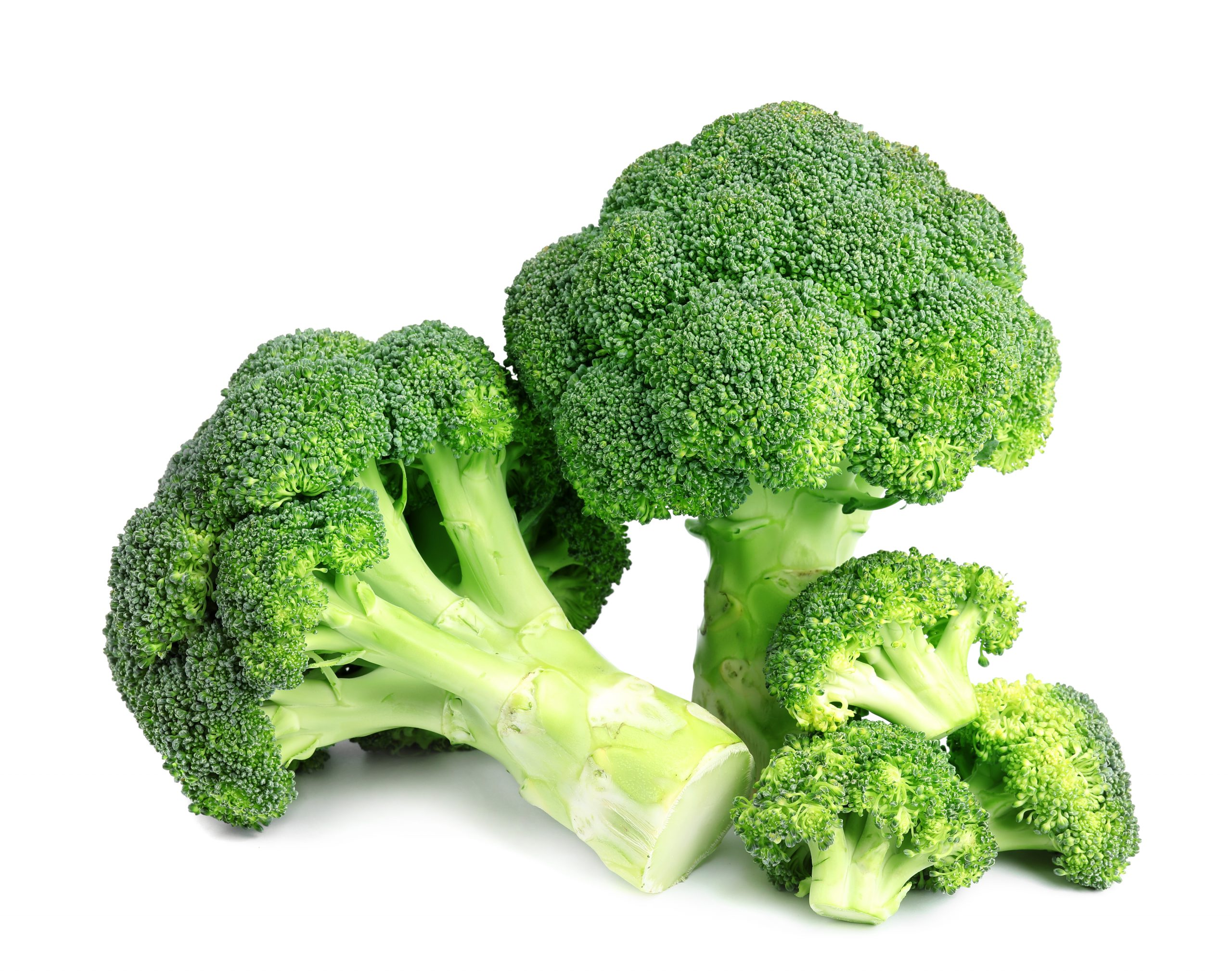 Broccoli Extract (สารสกัดจากบร็อกโคลี่)