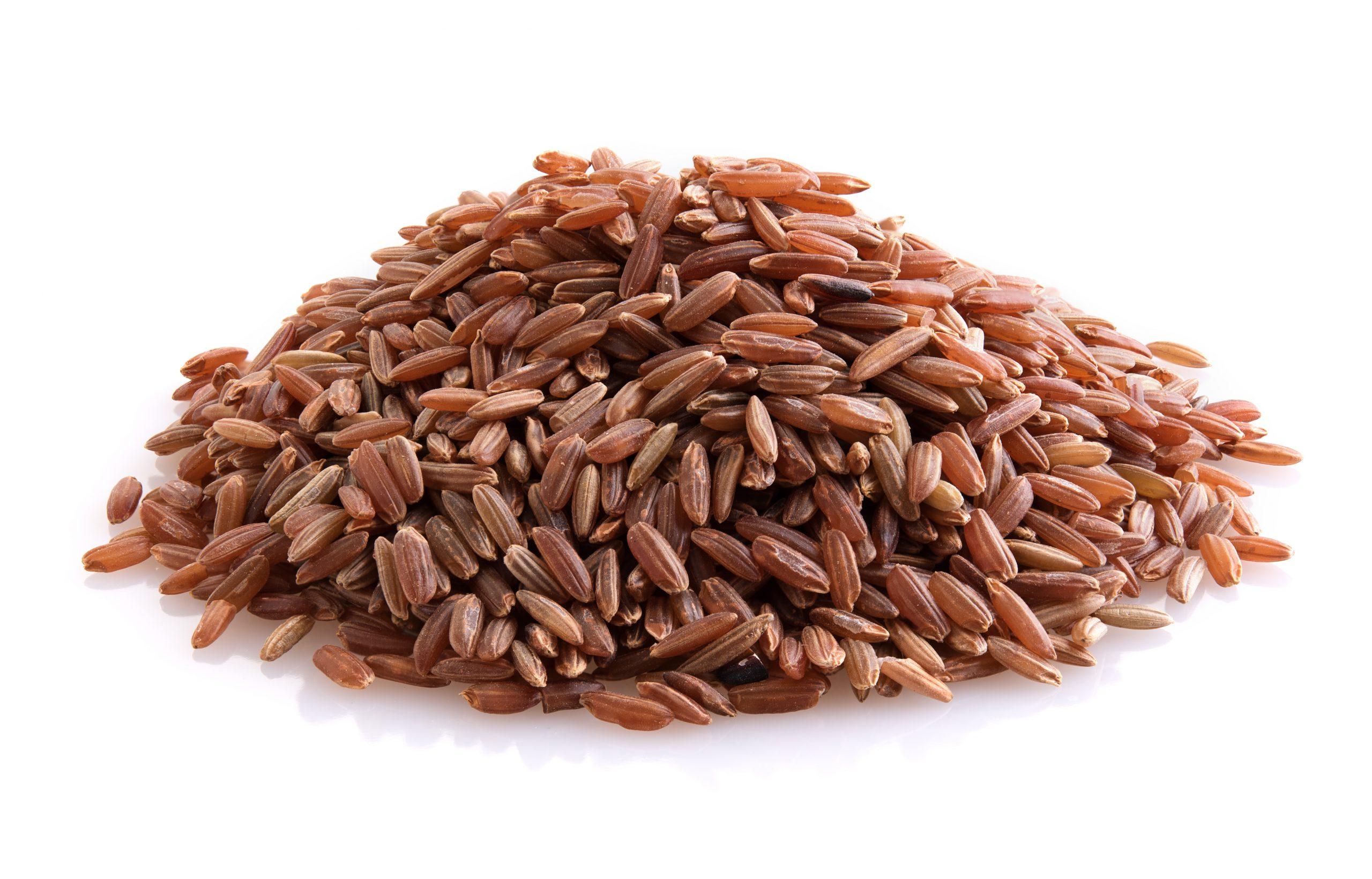 Brown Rice Protein (โปรตีนจากข้าวกล้อง)