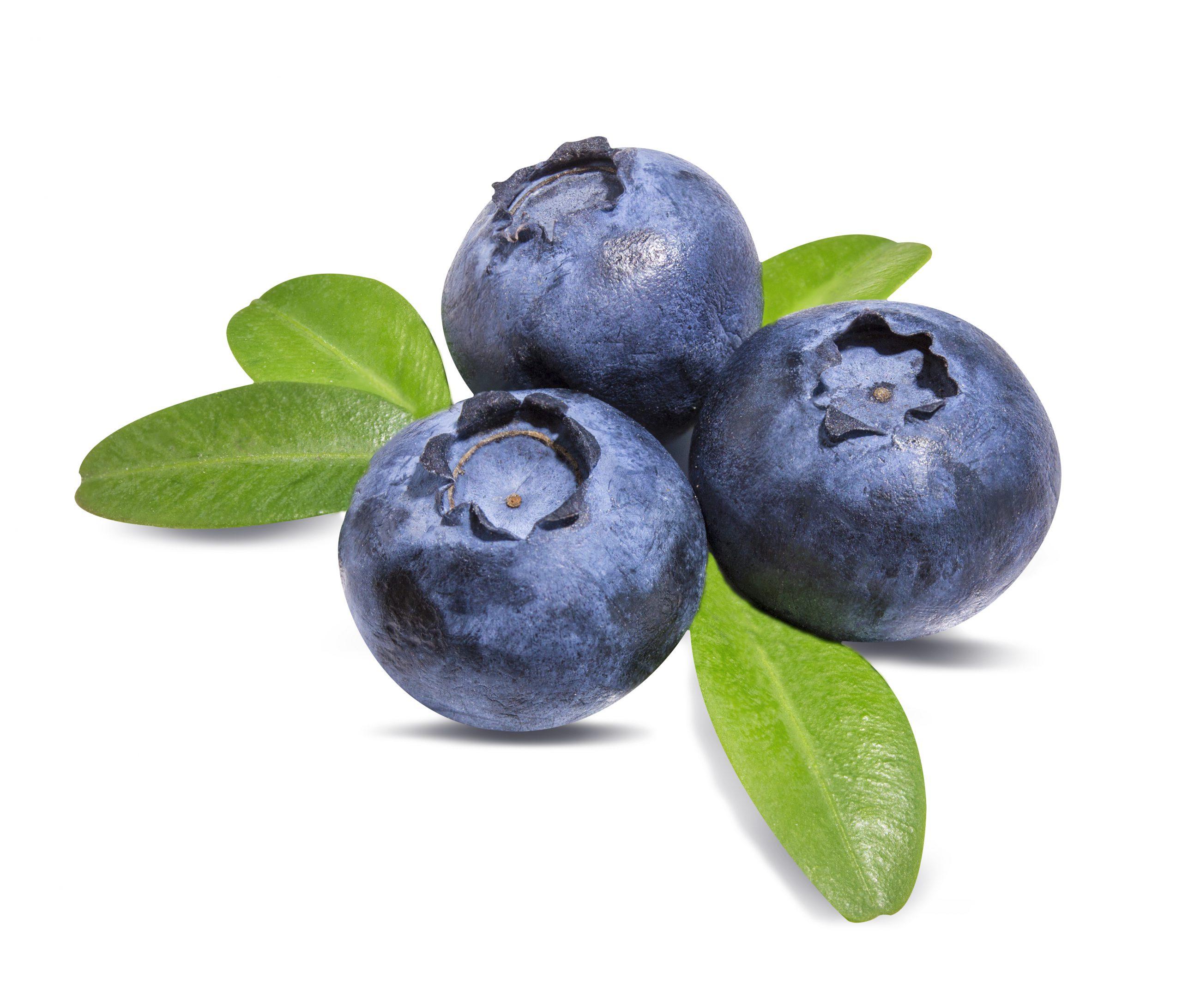 Blueberry (บลูเบอร์รี)