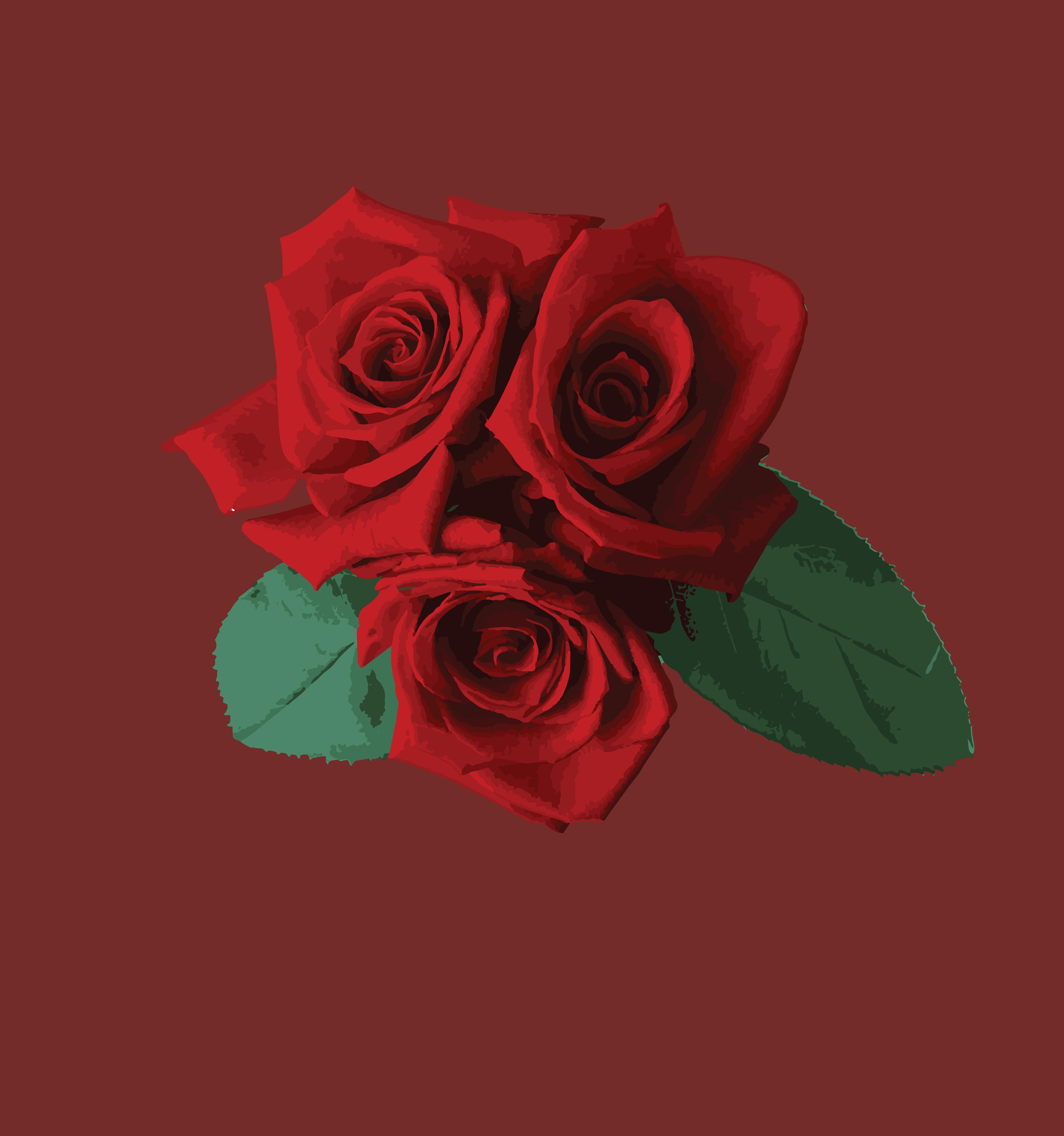 สารสกัดจากกุหลาบ (Rose Extract)